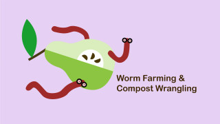 Worm Farm & Compost Wrangling